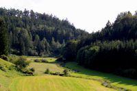 sommerlager_bucher_berg_20111128_1105479185