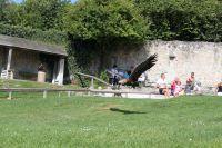sommerlager_bucher_berg_20111128_1891777867