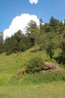 sommerlager_bucher_berg_20111128_2098120809